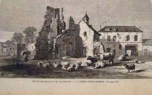 goumont101